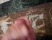 střik - video č. 63416
